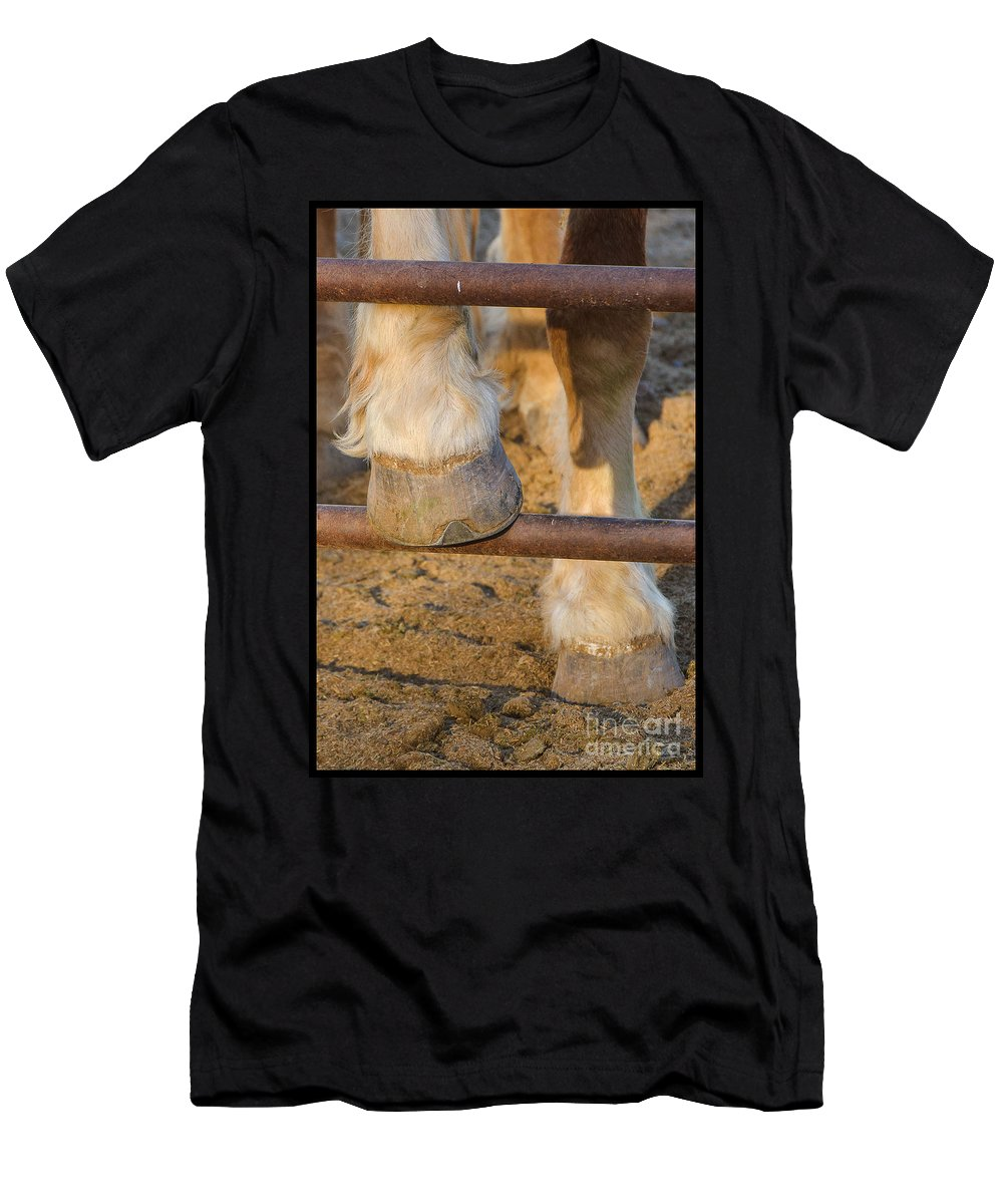 Horses Men's T-Shirt (Athletic Fit) featuring the photograph Horses 4 by Larry White