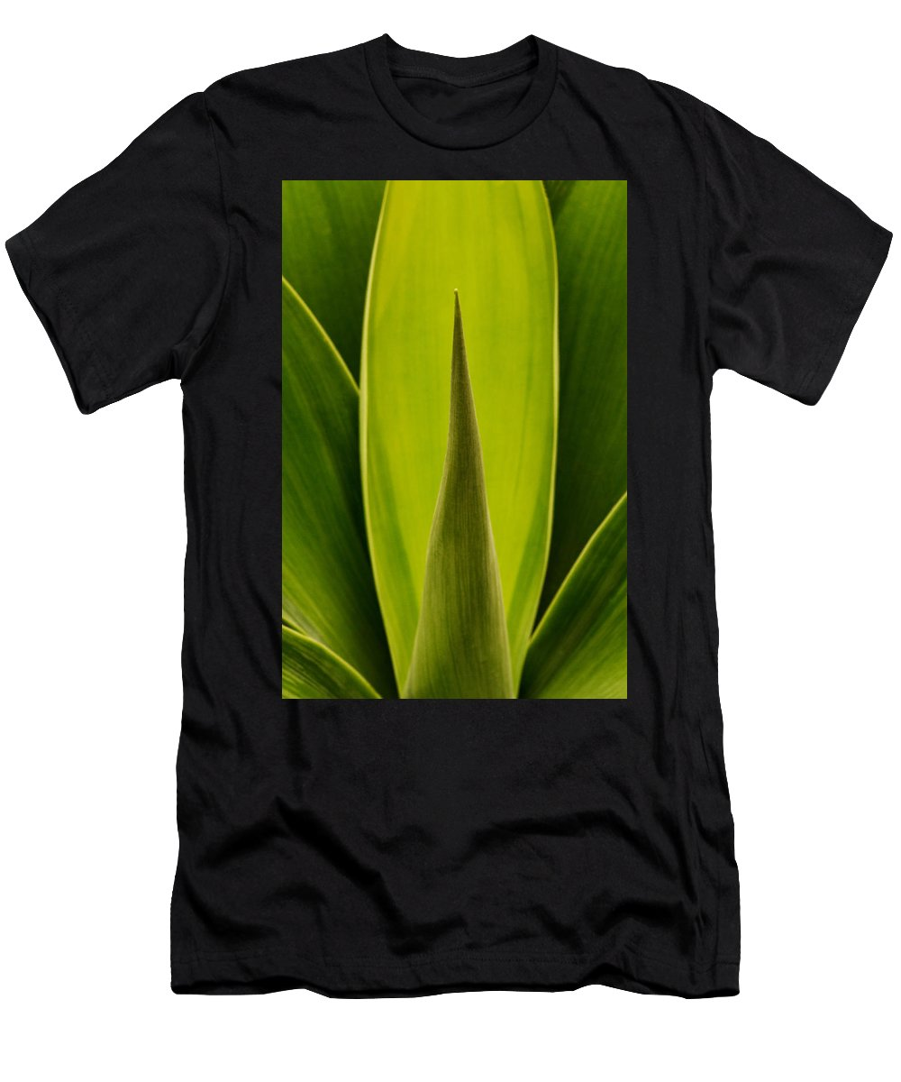 Plant Men's T-Shirt (Athletic Fit) featuring the photograph House Plant by Robert Woodward