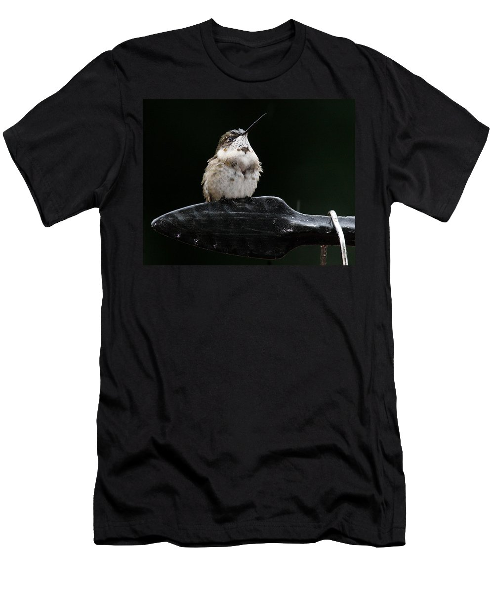 Men's T-Shirt (Athletic Fit) featuring the photograph Hummer In The Rain II by Douglas Stucky