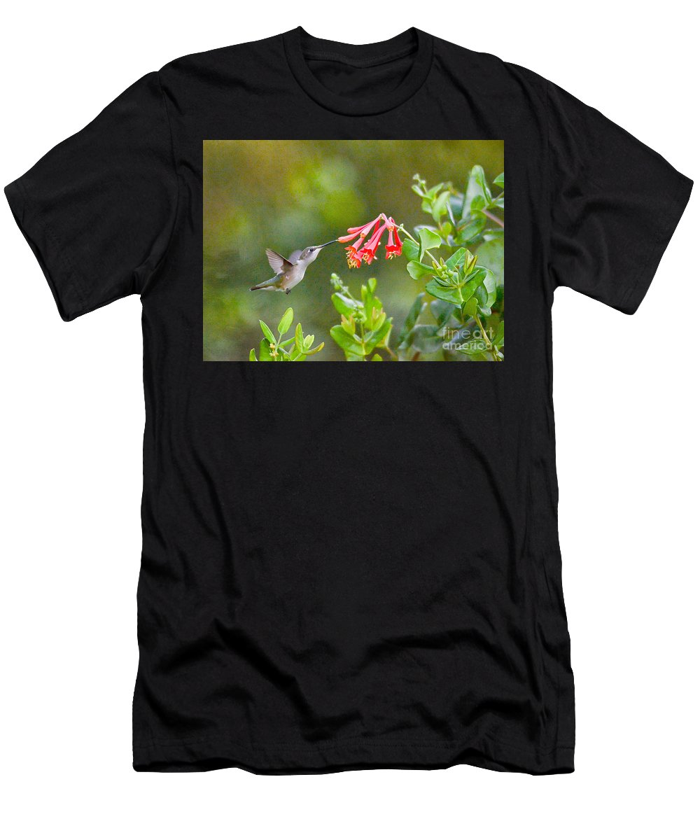 Hummingbird Men's T-Shirt (Athletic Fit) featuring the photograph Hummingbird Dives In by Kerri Farley
