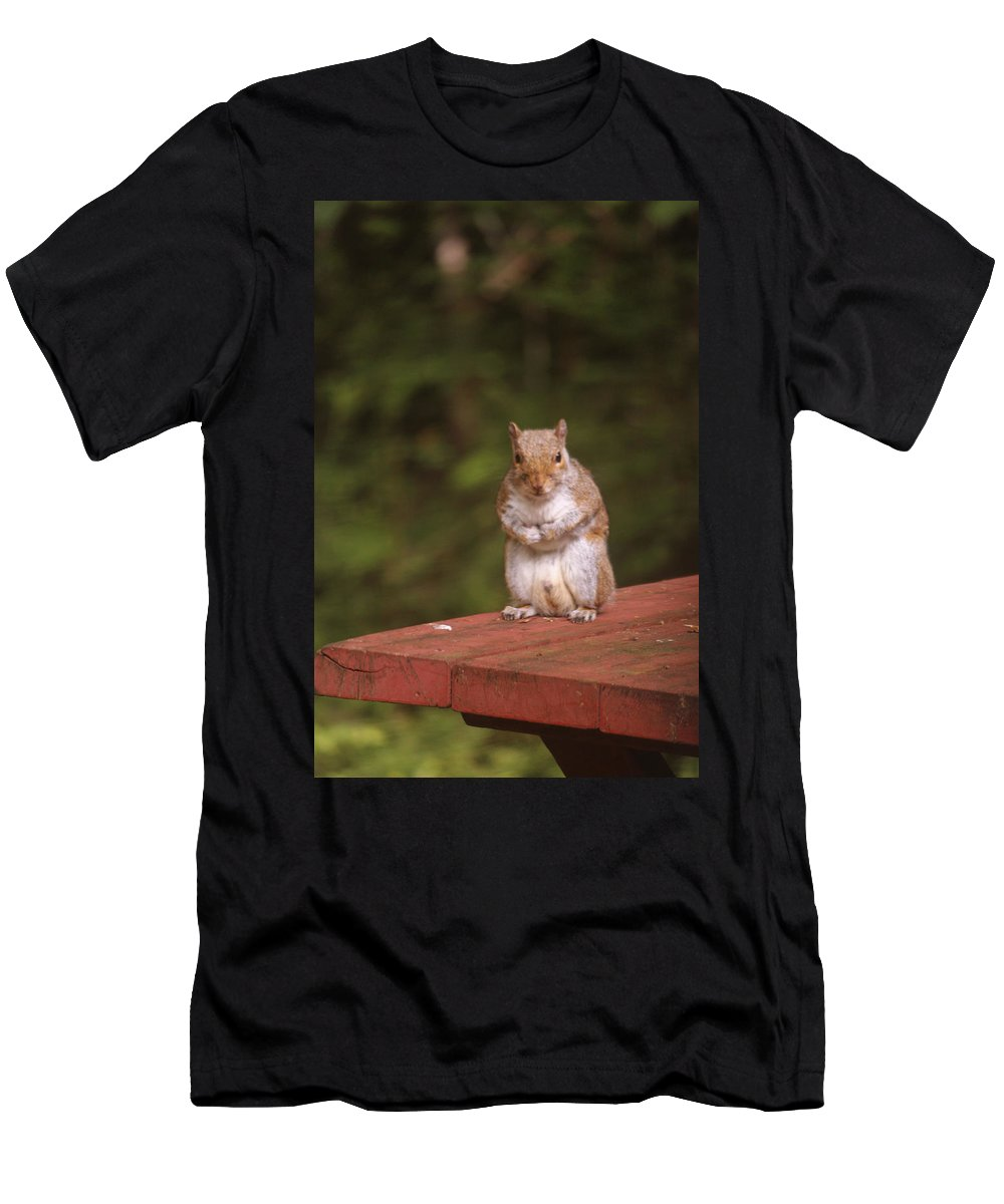Mammals Men's T-Shirt (Athletic Fit) featuring the photograph I Can Feel It Right Here by Kym Backland