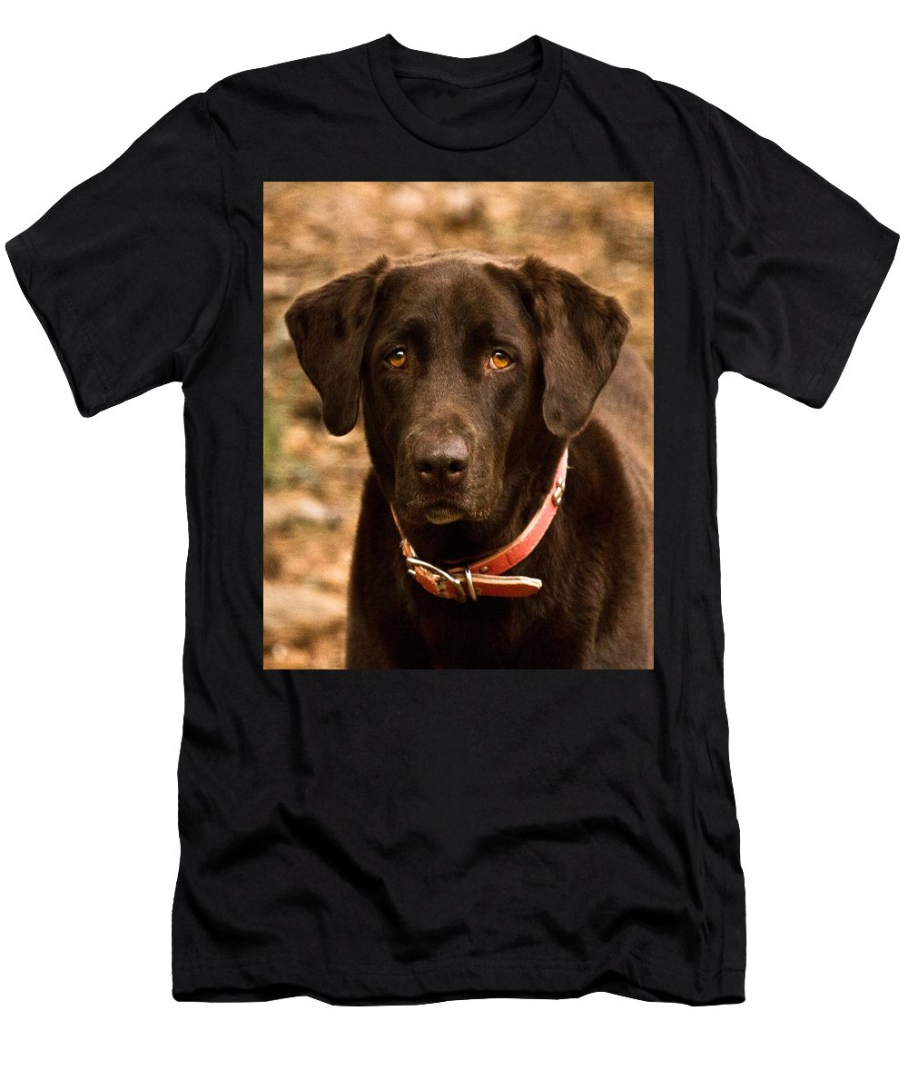 Cocoa Men's T-Shirt (Athletic Fit) featuring the photograph I Swear I Didn't Do It by Robert L Jackson