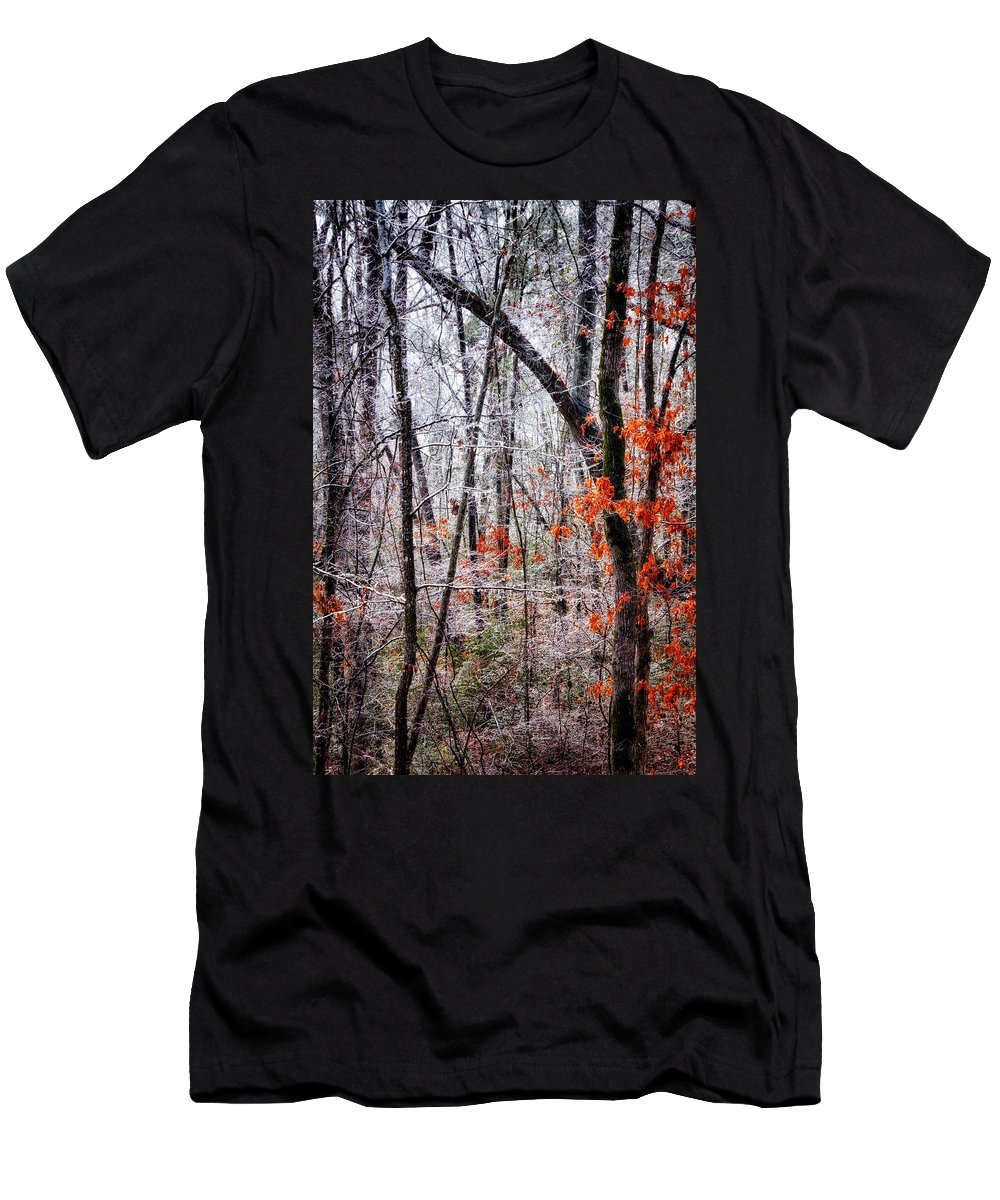 Freezing Rain Men's T-Shirt (Athletic Fit) featuring the photograph Ice Trees by Daniel George