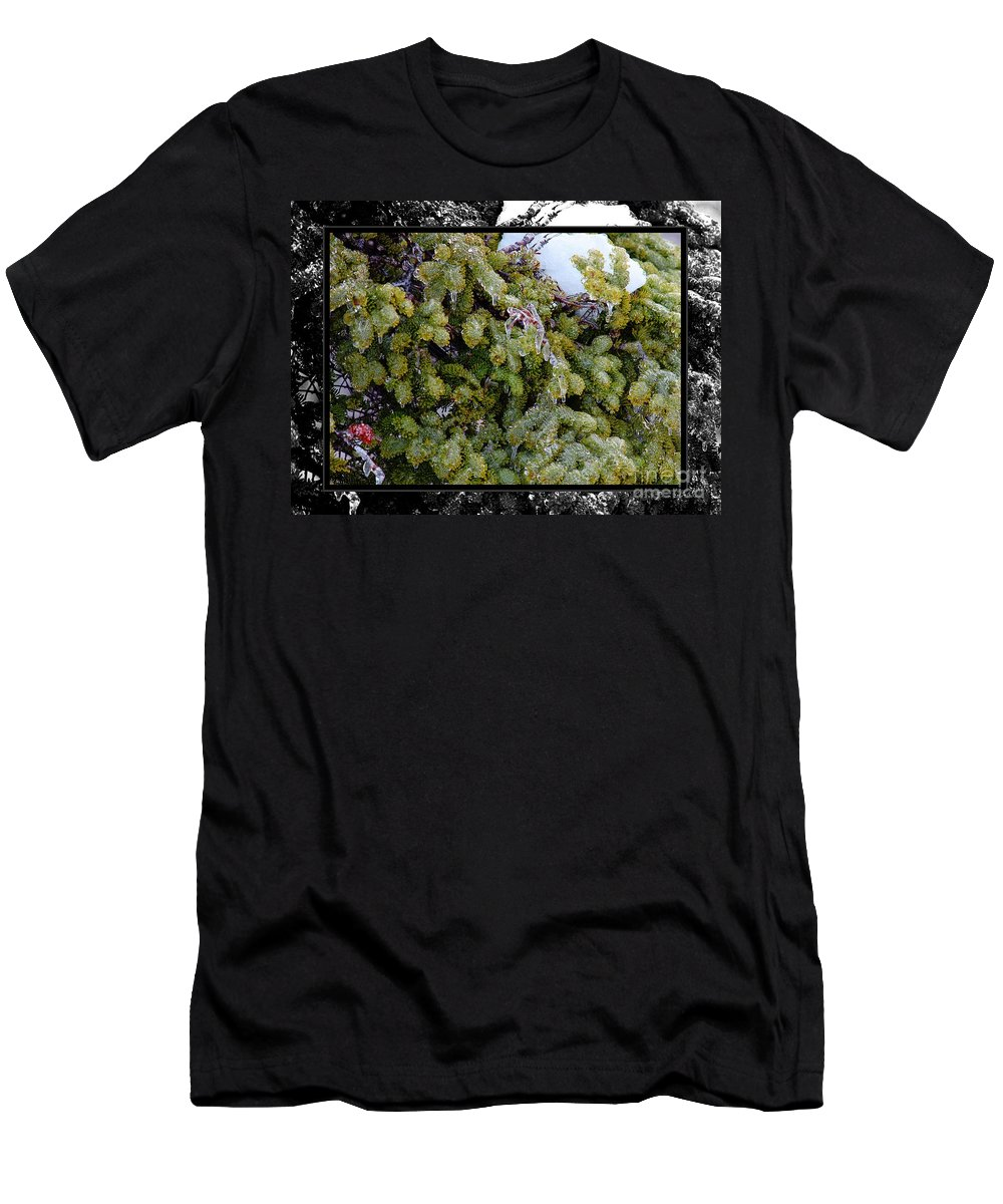 Icy Trees With Black And White Border Men's T-Shirt (Athletic Fit) featuring the photograph Icy Trees With Black And White Border by Barbara Griffin