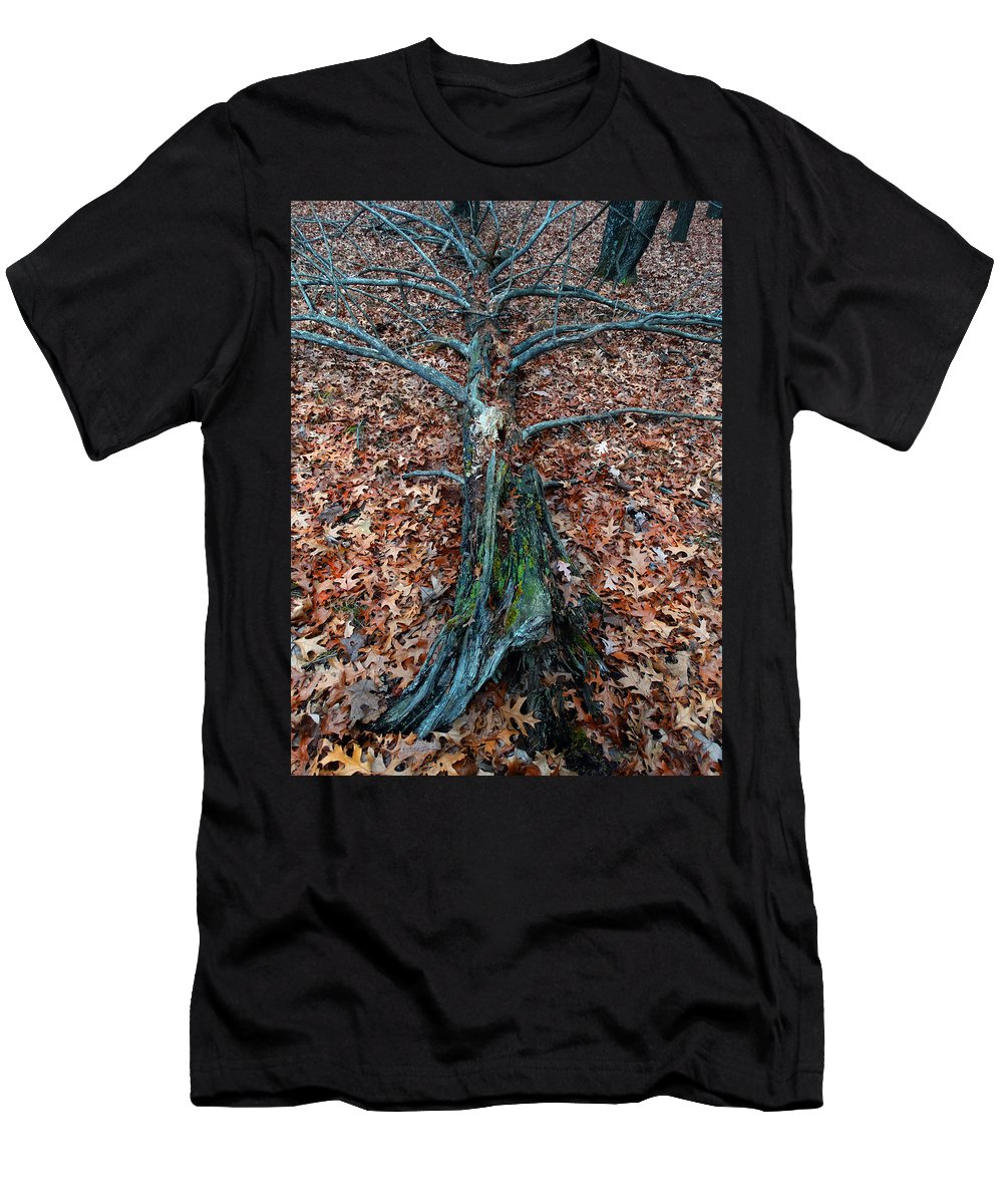 Tree Men's T-Shirt (Athletic Fit) featuring the photograph If A Tree Falls In The Woods by David T Wilkinson