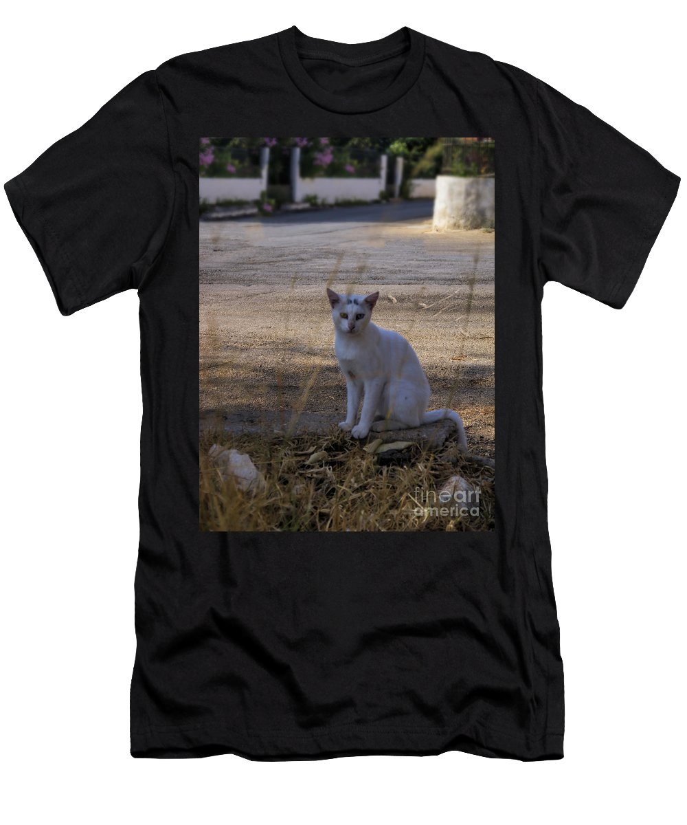 Kefalonia Men's T-Shirt (Athletic Fit) featuring the photograph If Cats Could Talk by Gillian Singleton