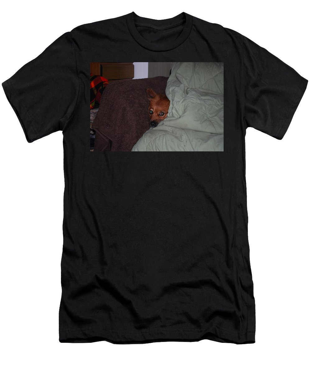 Foxy Under Cover Men's T-Shirt (Athletic Fit) featuring the photograph I'm Cold by Robert Floyd