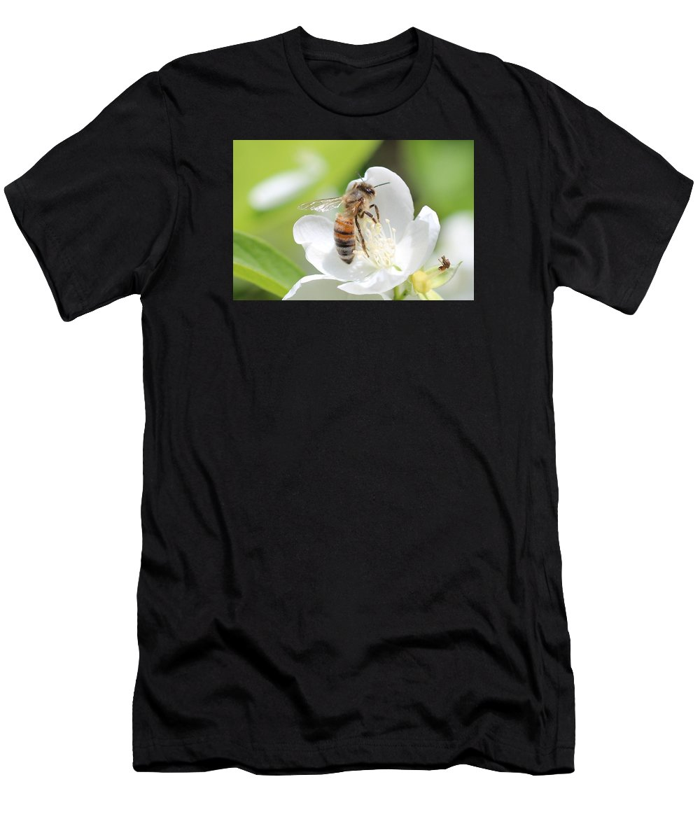 Honeybee Men's T-Shirt (Athletic Fit) featuring the photograph In A Mock Orange Blossom by Lucinda VanVleck