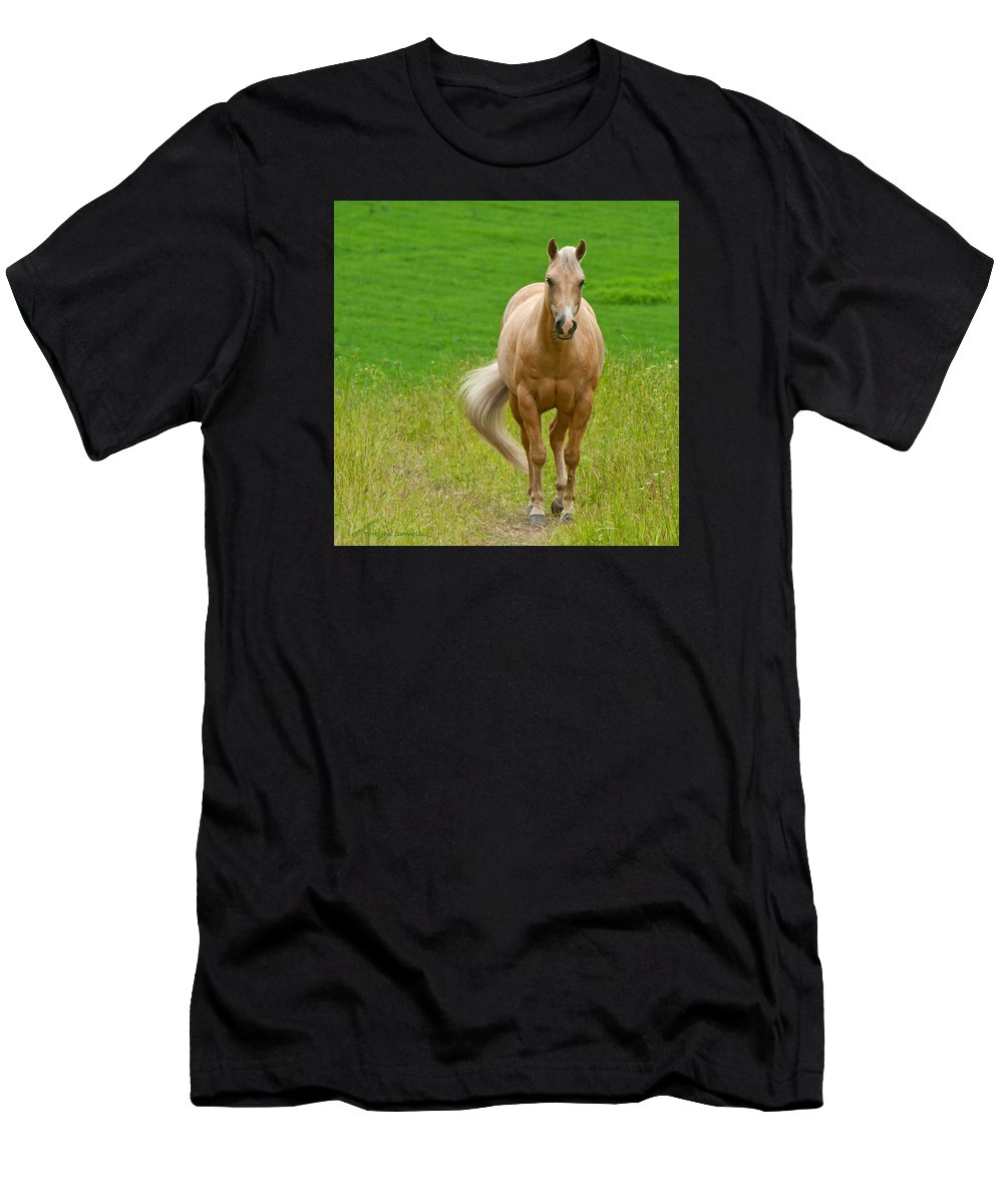 Pale Brown Horse Men's T-Shirt (Athletic Fit) featuring the photograph In The Meadow by Torbjorn Swenelius