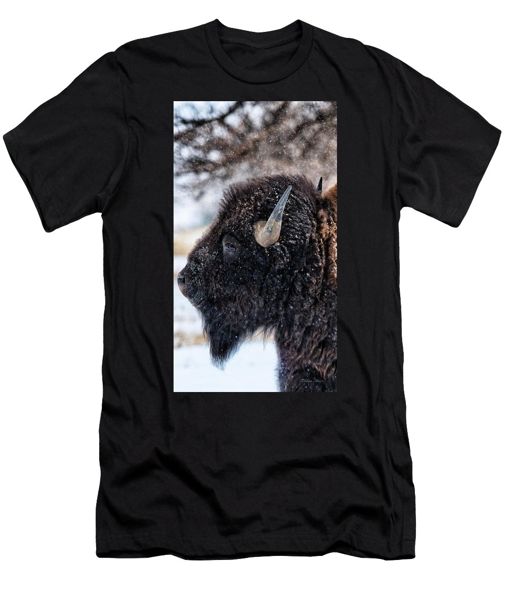 Olena Art Men's T-Shirt (Athletic Fit) featuring the photograph In The Presence Of Bison - 6 by OLena Art Brand