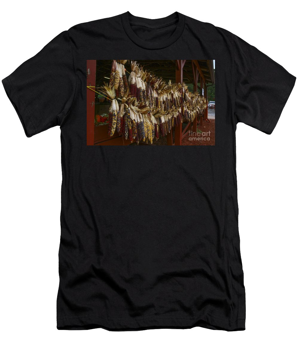 Indian Corn Men's T-Shirt (Athletic Fit) featuring the photograph Indian Corn Harvest by Barbara Bowen