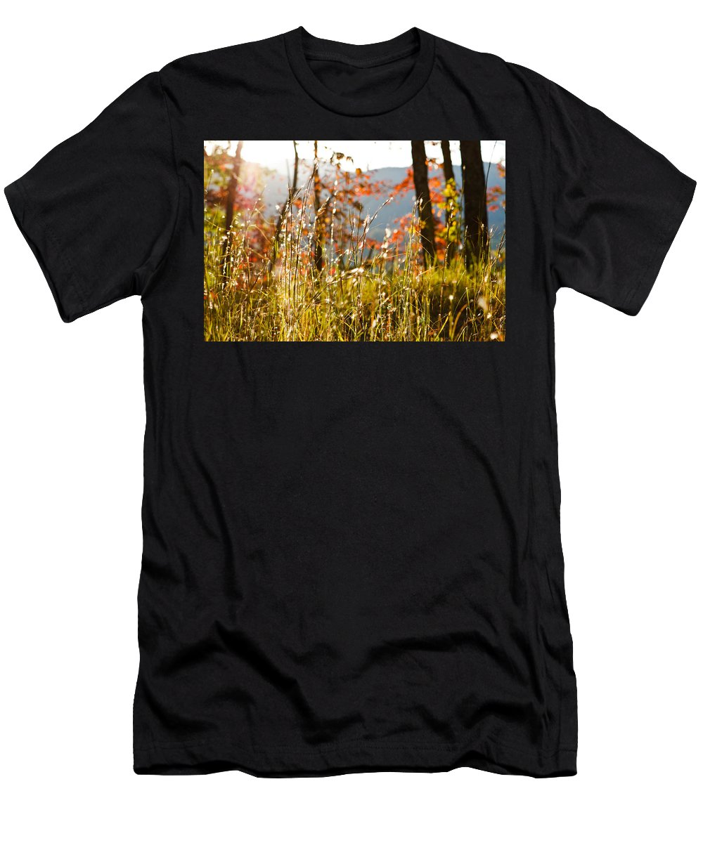 2012 Print Men's T-Shirt (Athletic Fit) featuring the photograph Indian Summer by Mela Luna