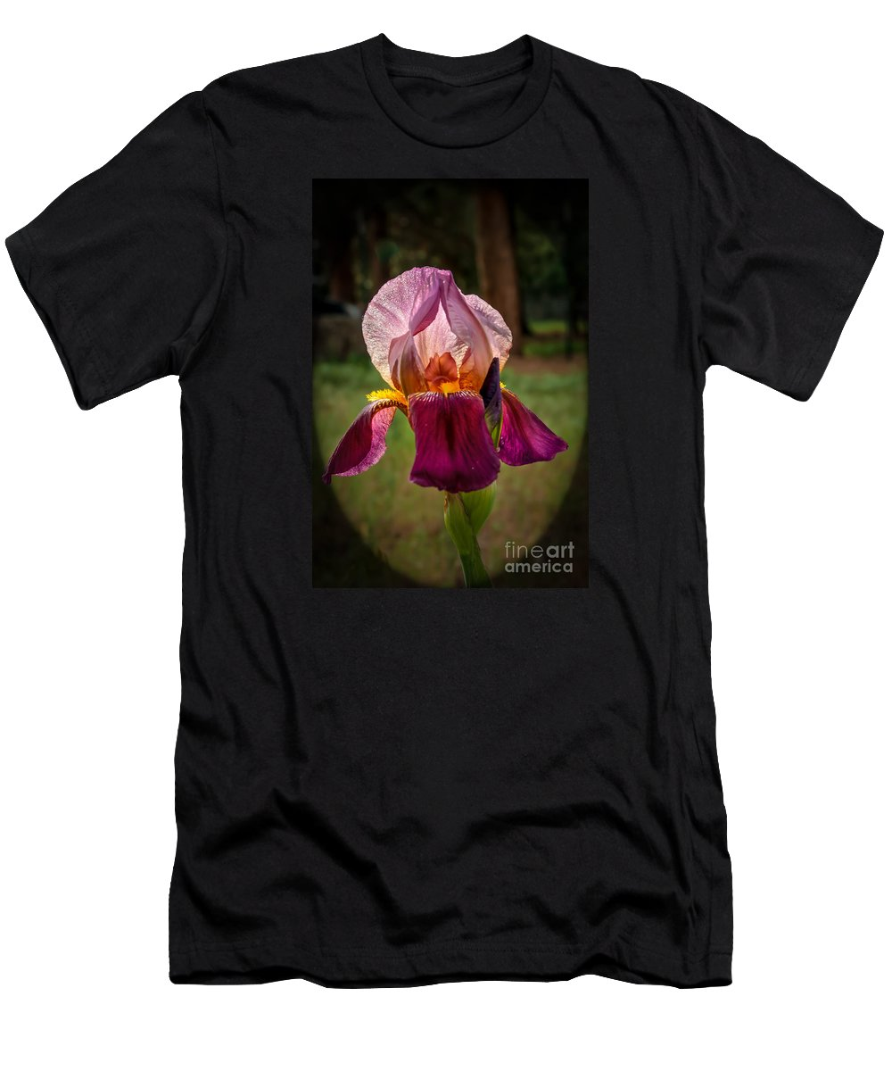 Flower Men's T-Shirt (Athletic Fit) featuring the photograph Iris In The Spotlight by Robert Bales
