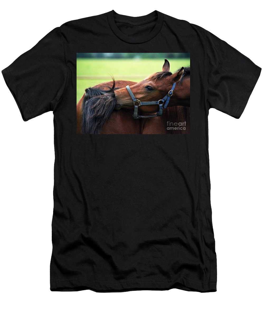 Horse Men's T-Shirt (Athletic Fit) featuring the photograph Is It My Tail by Angel Ciesniarska