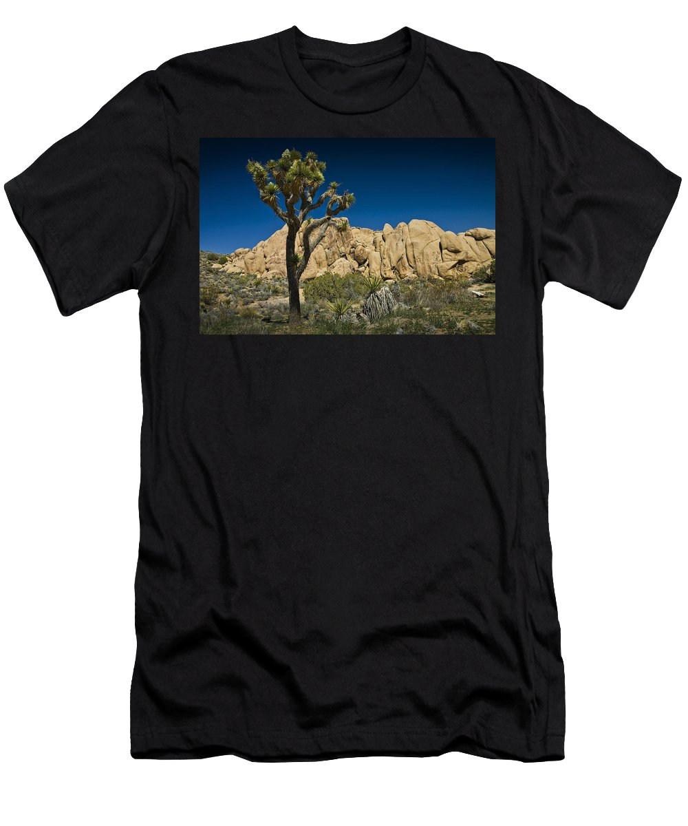 Art Men's T-Shirt (Athletic Fit) featuring the photograph Joshua Tree In Joshua Tree National Park No. 323 by Randall Nyhof