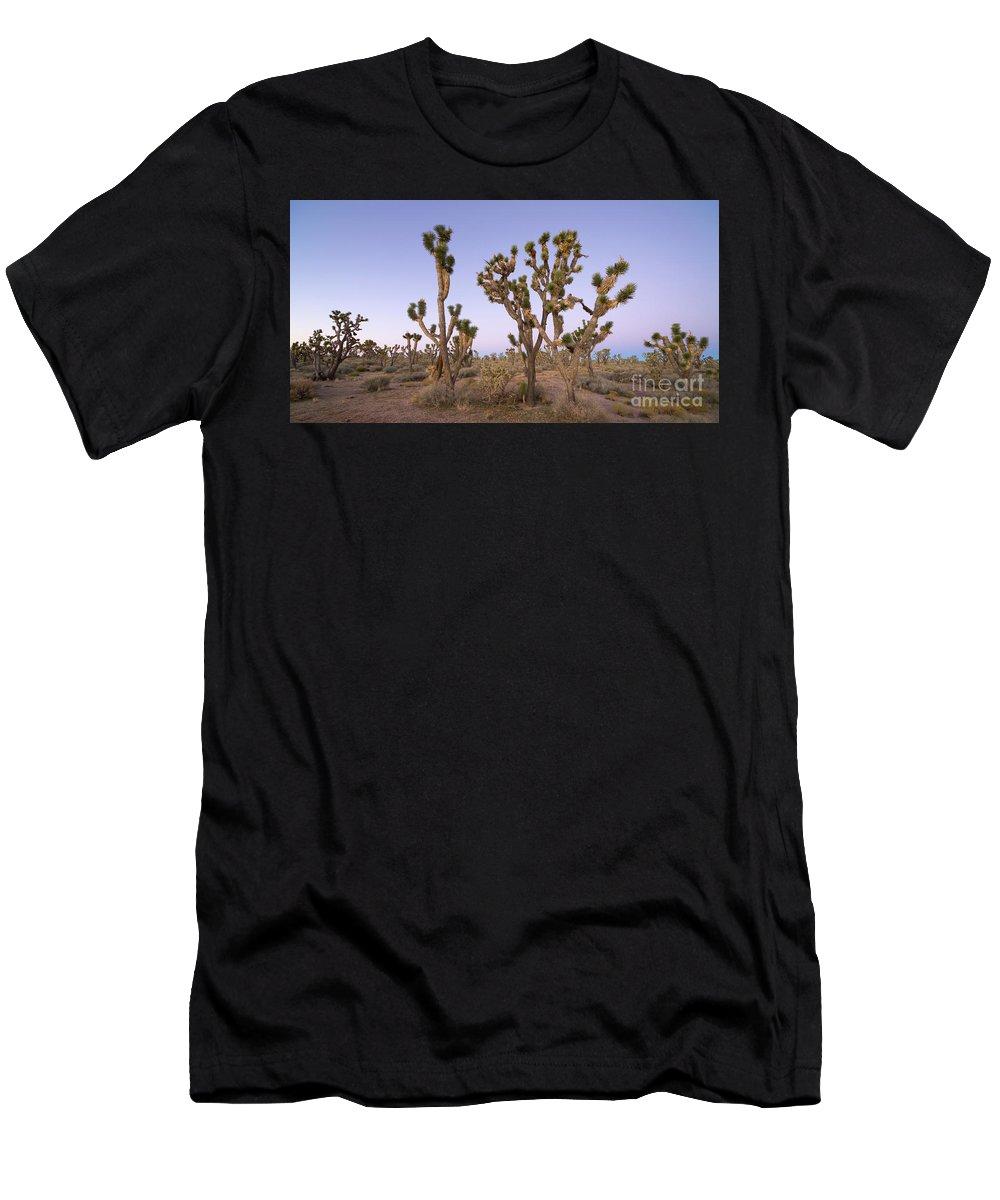 00463523 Men's T-Shirt (Athletic Fit) featuring the photograph Joshua Trees Nevada by Yva Momatiuk John Eastcott