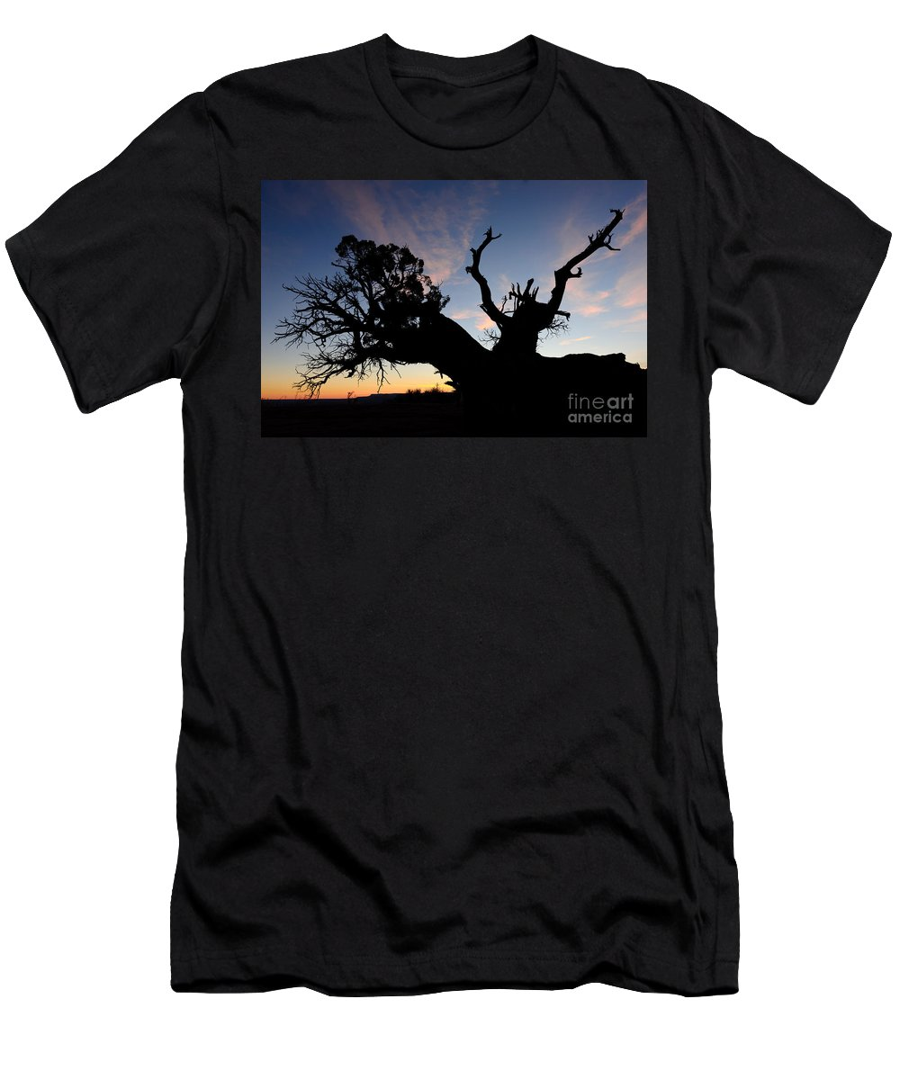 Nature Men's T-Shirt (Athletic Fit) featuring the photograph Juniper Tree, Canyonlands National Park by John Shaw