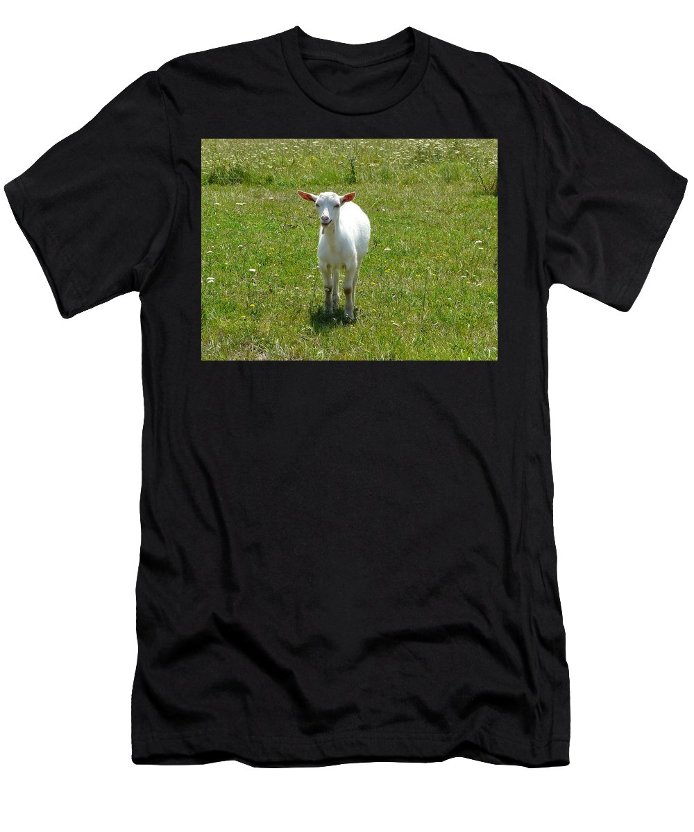 Kid Men's T-Shirt (Athletic Fit) featuring the photograph Kid Goat by Valerie Ornstein