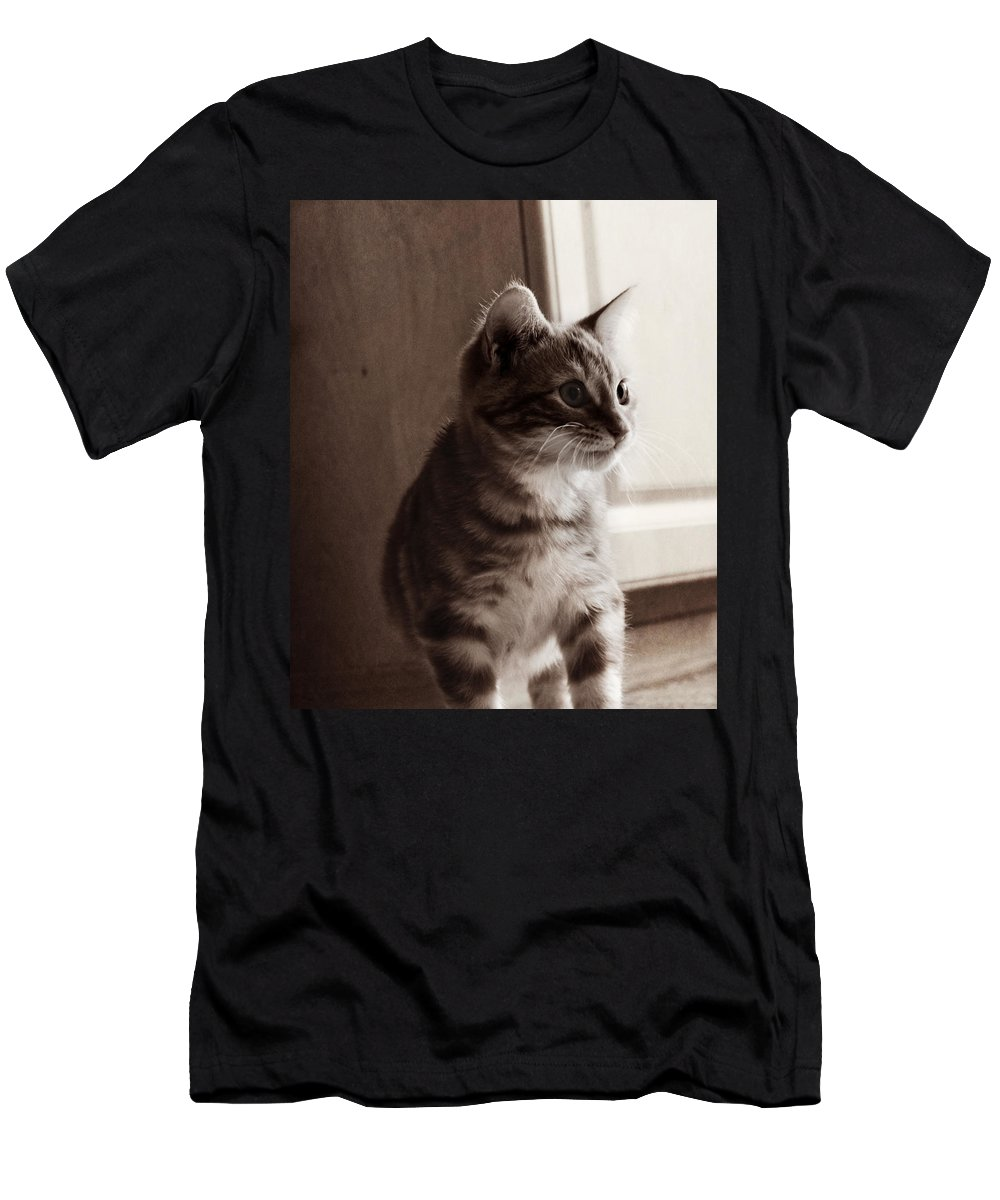 Kitten Men's T-Shirt (Athletic Fit) featuring the photograph Kitten In The Light by Melanie Lankford Photography