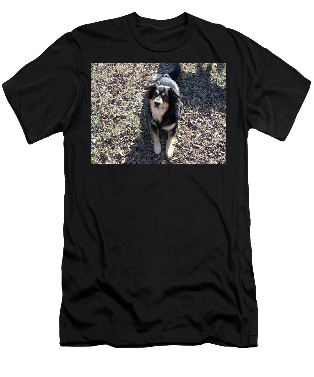 Dog Men's T-Shirt (Athletic Fit) featuring the photograph Kody 2 by Lisa Wormell