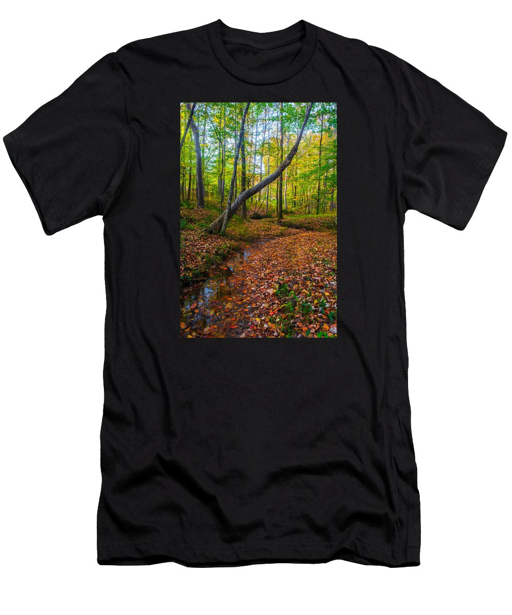 Magical Men's T-Shirt (Athletic Fit) featuring the photograph Land Of The Fairies by Parker Cunningham