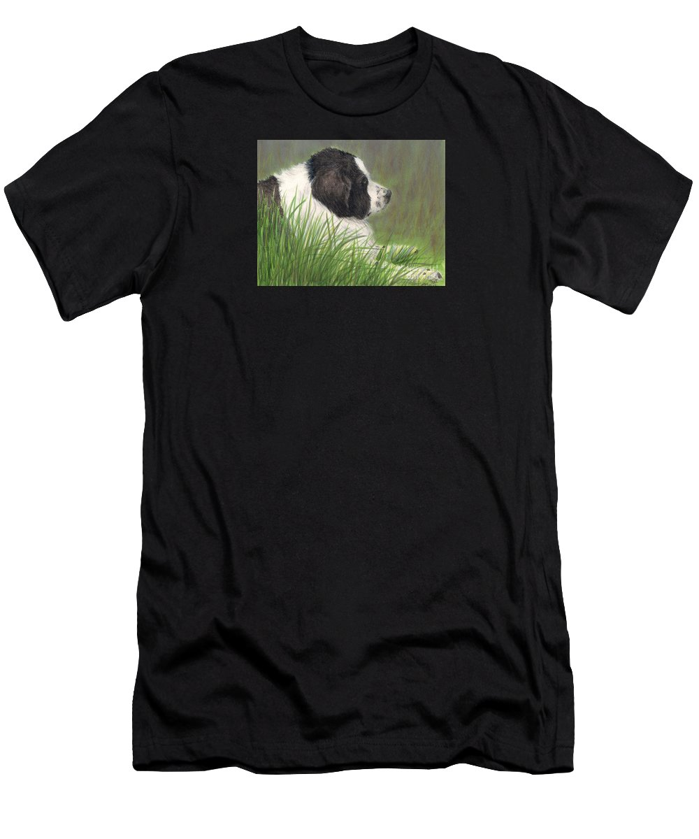 Landseer Men's T-Shirt (Athletic Fit) featuring the painting Landseer Newfoundland Dog In Grass Pets Animal Art by Cathy Peek
