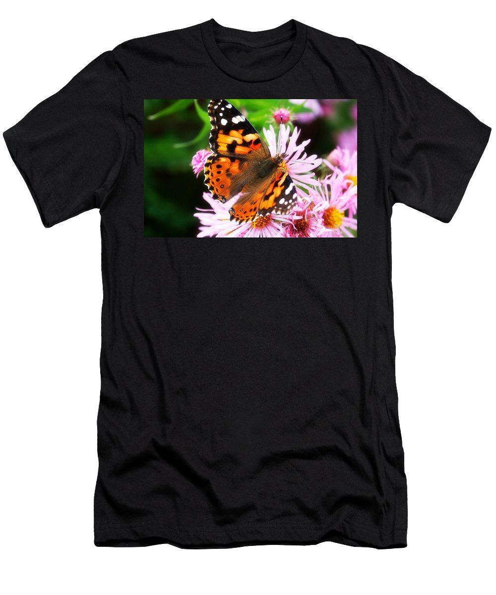 Flower Men's T-Shirt (Athletic Fit) featuring the photograph Late Summer Painted Lady by Marilyn Hunt
