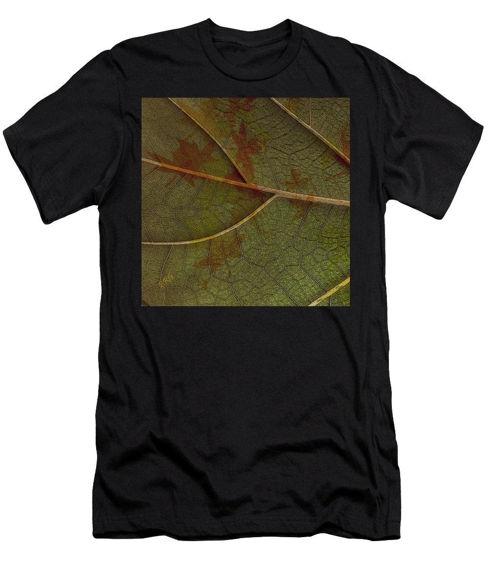 Leaf Men's T-Shirt (Athletic Fit) featuring the photograph Leaf Design I by Ben and Raisa Gertsberg
