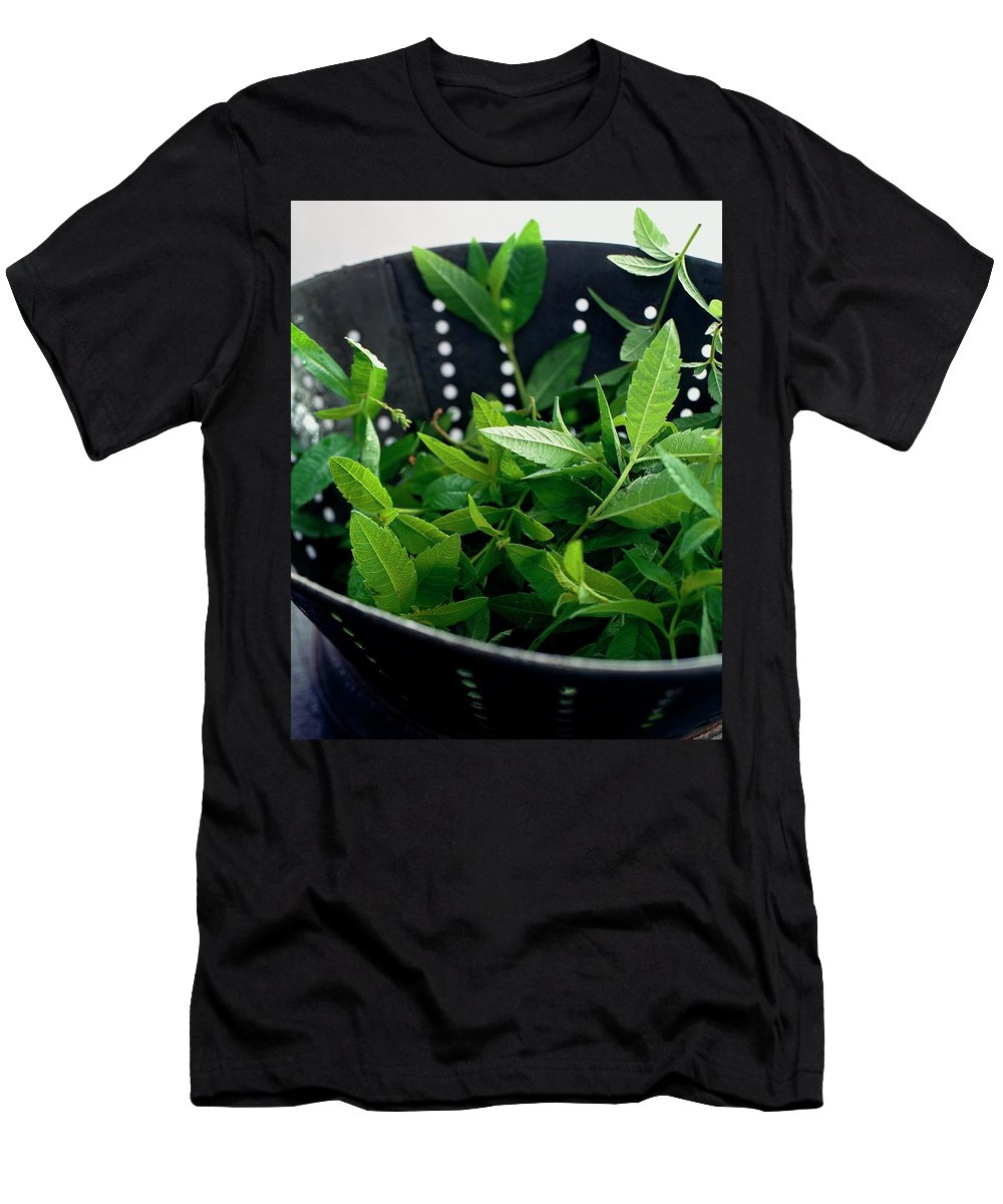 Cooking Men's T-Shirt (Athletic Fit) featuring the photograph Lemon Verbena Herbs by Romulo Yanes
