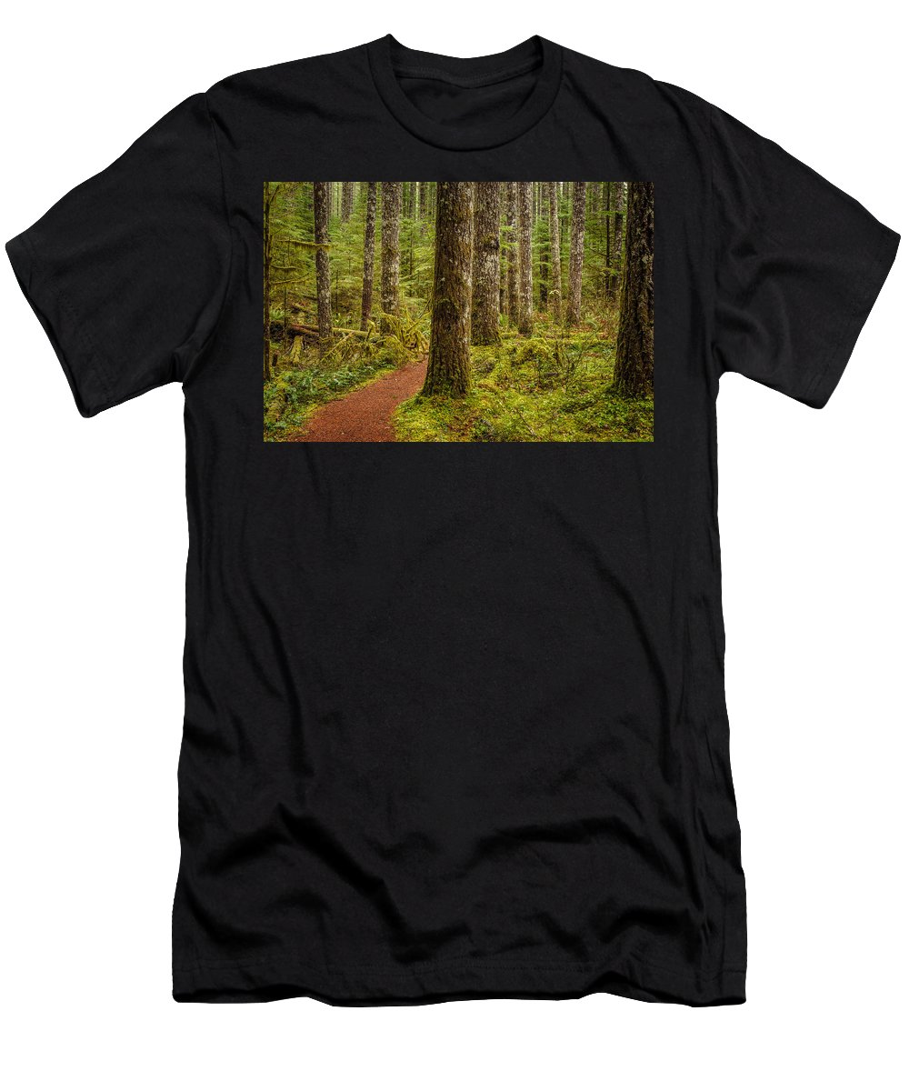 Trail Men's T-Shirt (Athletic Fit) featuring the photograph Lewis Falls Trail 2 by Mike Penney