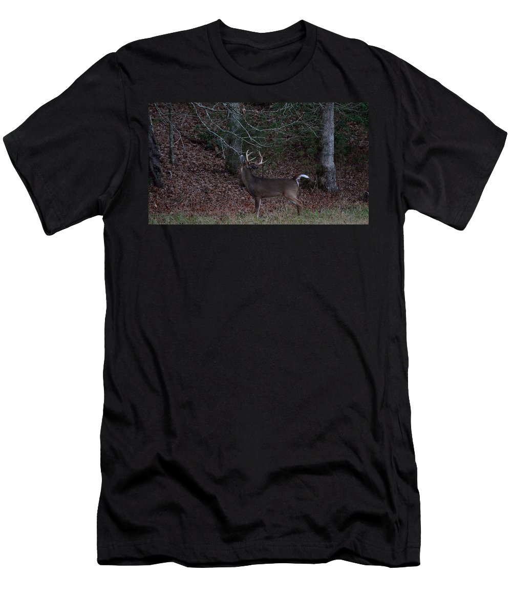 Cades Cove Men's T-Shirt (Athletic Fit) featuring the photograph Licking Branch by Todd Hostetter