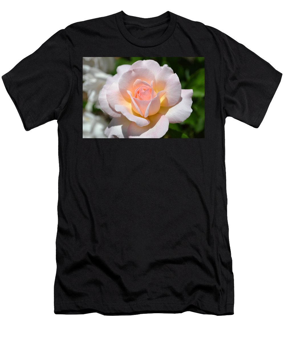 Rose Men's T-Shirt (Athletic Fit) featuring the photograph Light Pink Rose by April Patterson