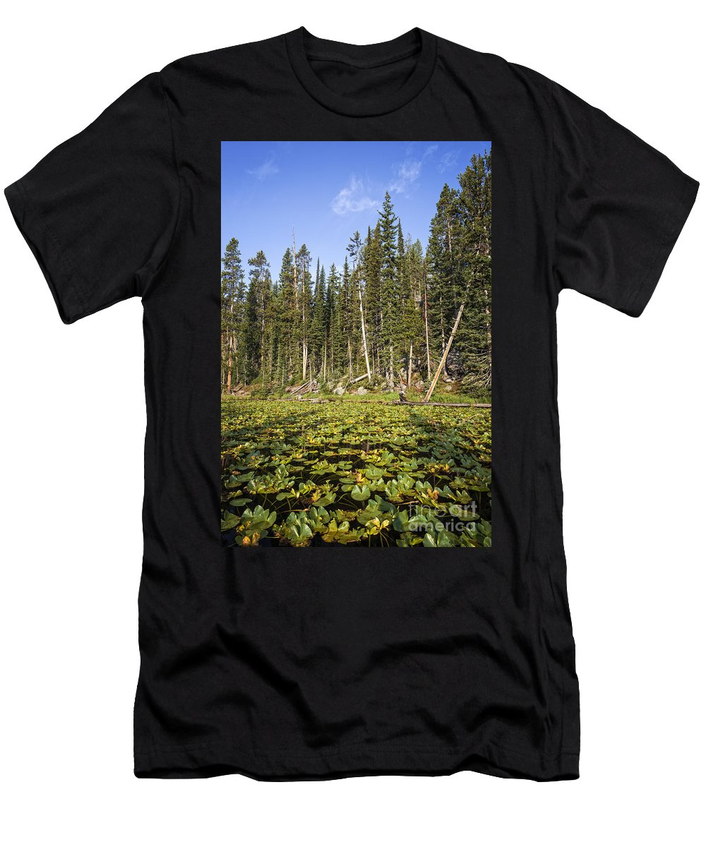 Isa Lake Men's T-Shirt (Athletic Fit) featuring the photograph Lily Pads On Isa Lake by Bryan Mullennix