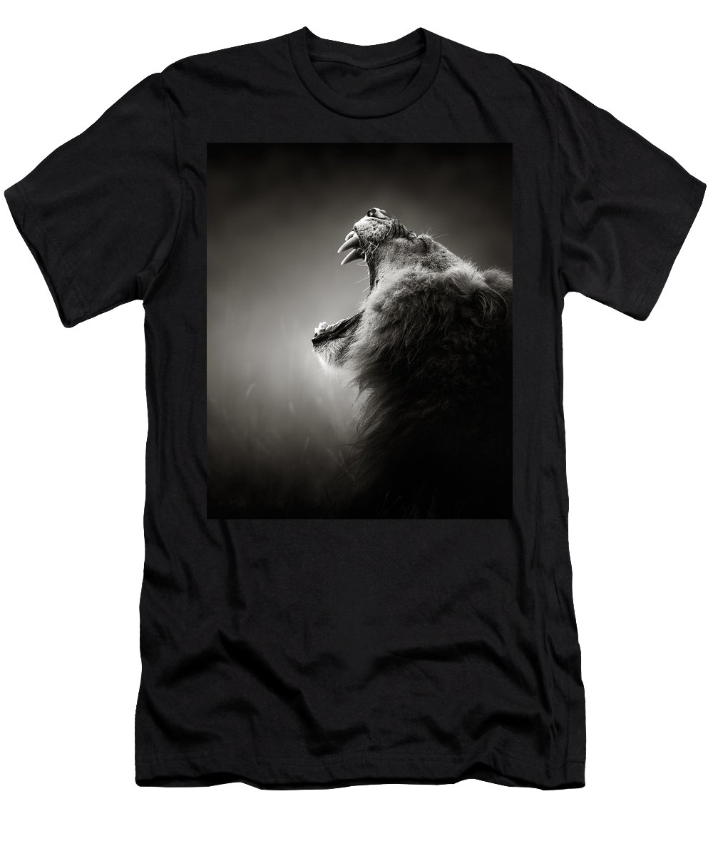 Lion T-Shirt featuring the photograph Lion displaying dangerous teeth by Johan Swanepoel