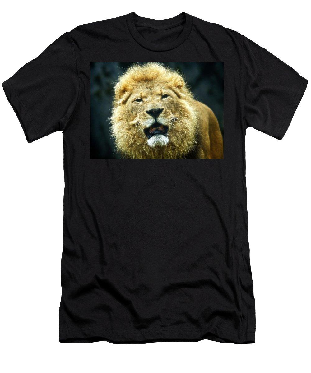 Wildlife Men's T-Shirt (Athletic Fit) featuring the photograph Lion by Steve McKinzie