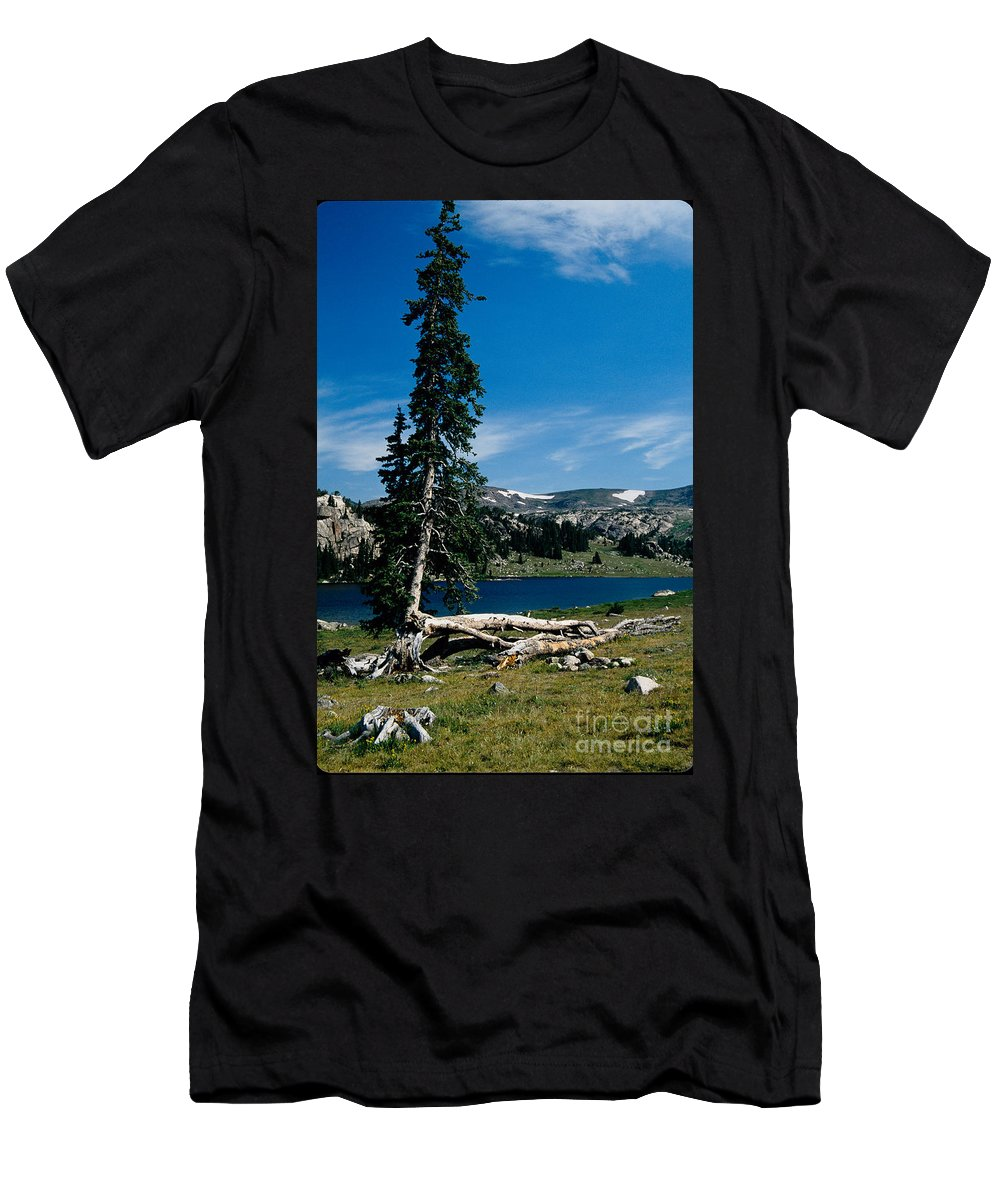 Mountains Men's T-Shirt (Athletic Fit) featuring the photograph Lone Tree At Pass by Kathy McClure