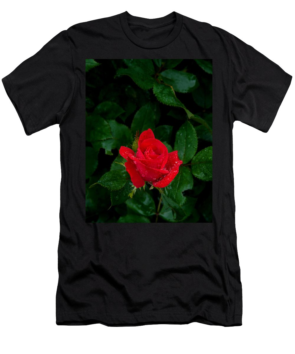 Flower Men's T-Shirt (Athletic Fit) featuring the photograph Lonely Rose by Benjamin Reed