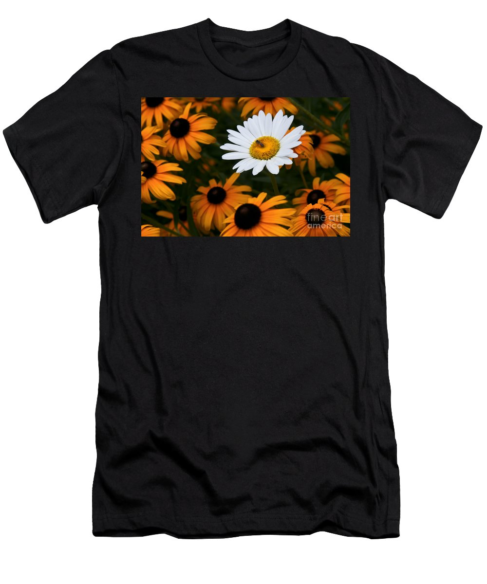 Daisy Daisies Bee Yellow Orange White Men's T-Shirt (Athletic Fit) featuring the photograph Loner by Karl Greeson