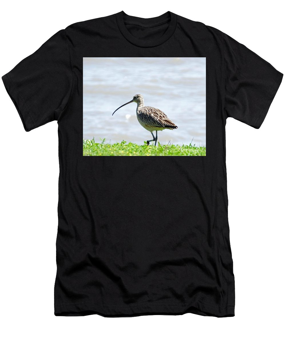 Bill Men's T-Shirt (Athletic Fit) featuring the photograph Long Billed Curlew by Lizi Beard-Ward