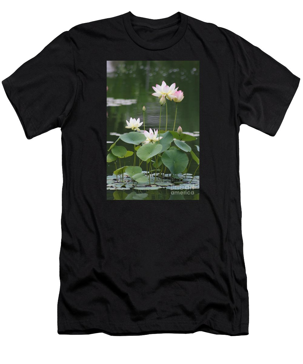 Lotus T-Shirt featuring the photograph Lotus Patch by Christiane Schulze Art And Photography