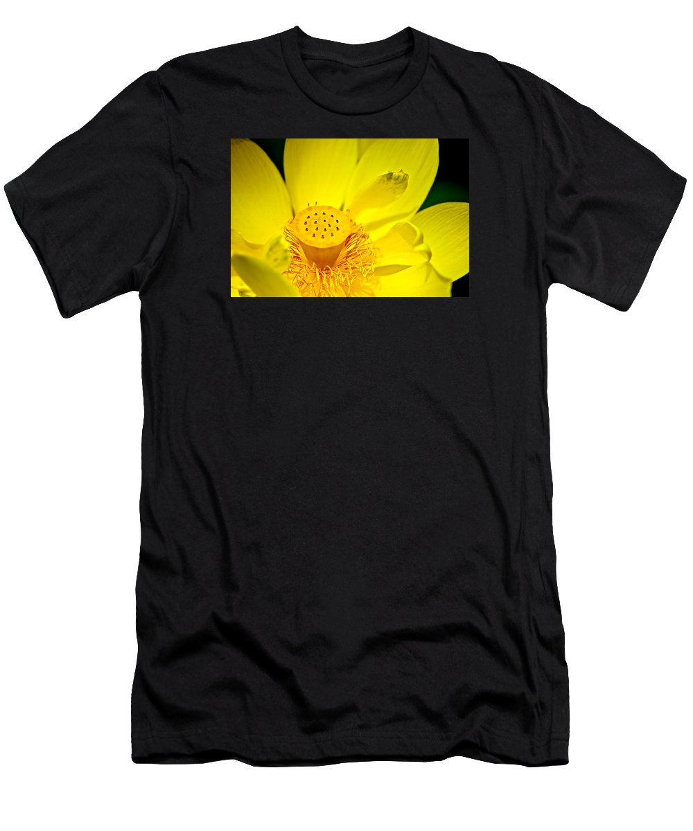 Lotus Men's T-Shirt (Athletic Fit) featuring the photograph Lotus by Roger Passman