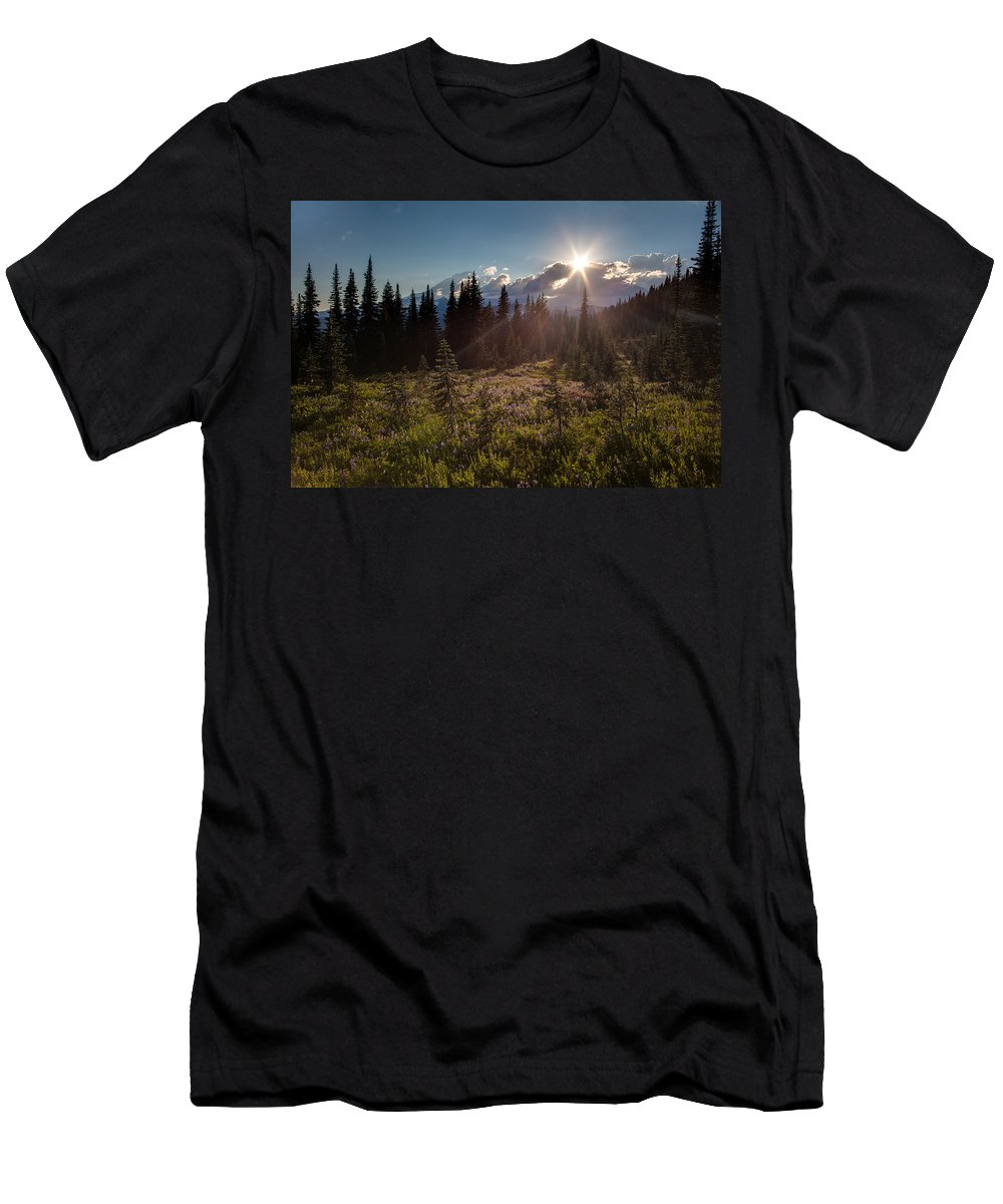 Rainier Men's T-Shirt (Athletic Fit) featuring the photograph Lupine Field Sunstar by Mike Reid