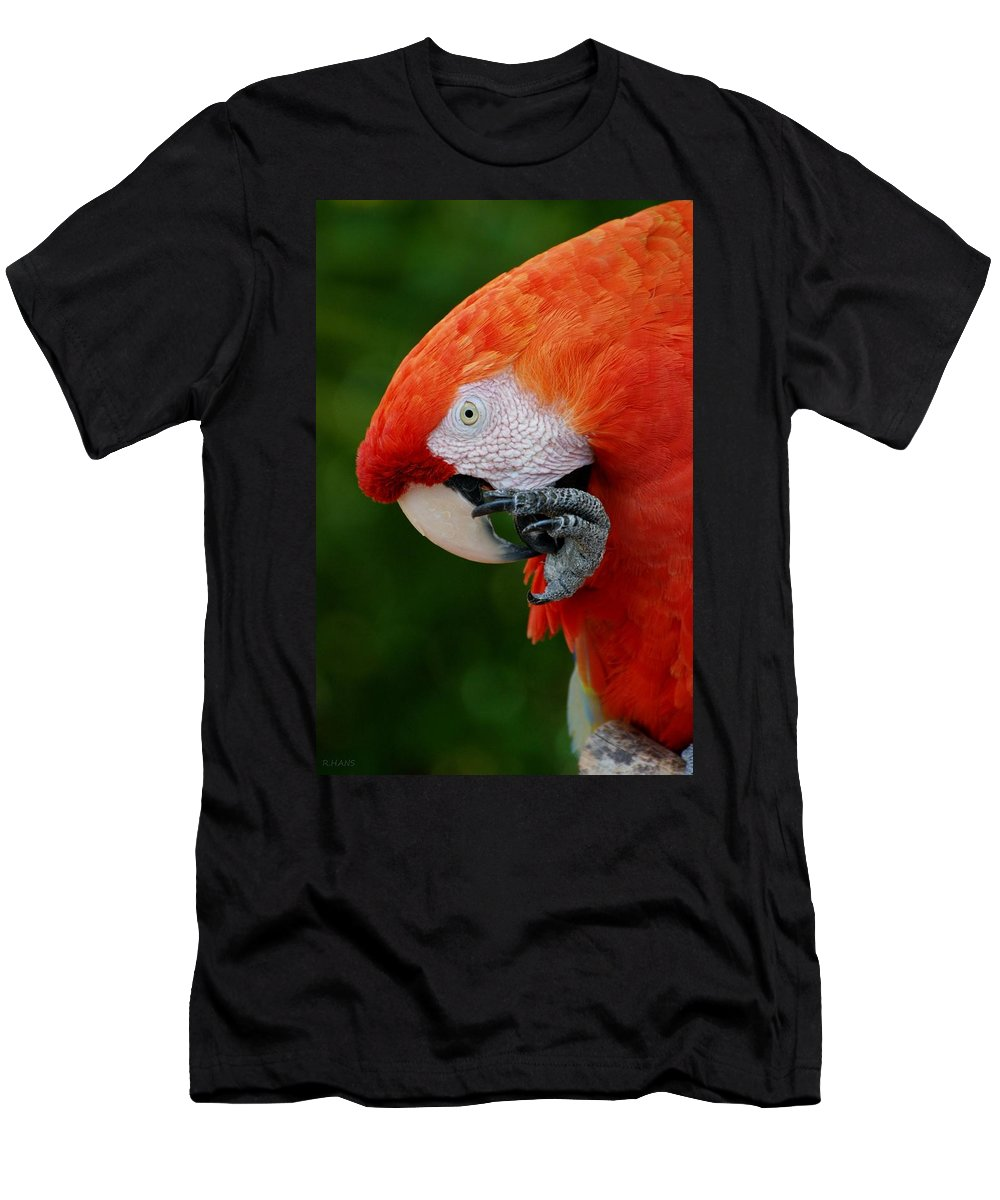 Macaws Men's T-Shirt (Athletic Fit) featuring the photograph Macaws Of Color32 by Rob Hans
