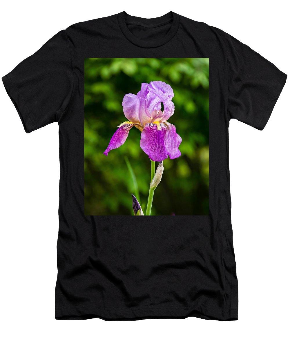 Flora Men's T-Shirt (Athletic Fit) featuring the photograph Magenta Iris Profile by Steve Harrington
