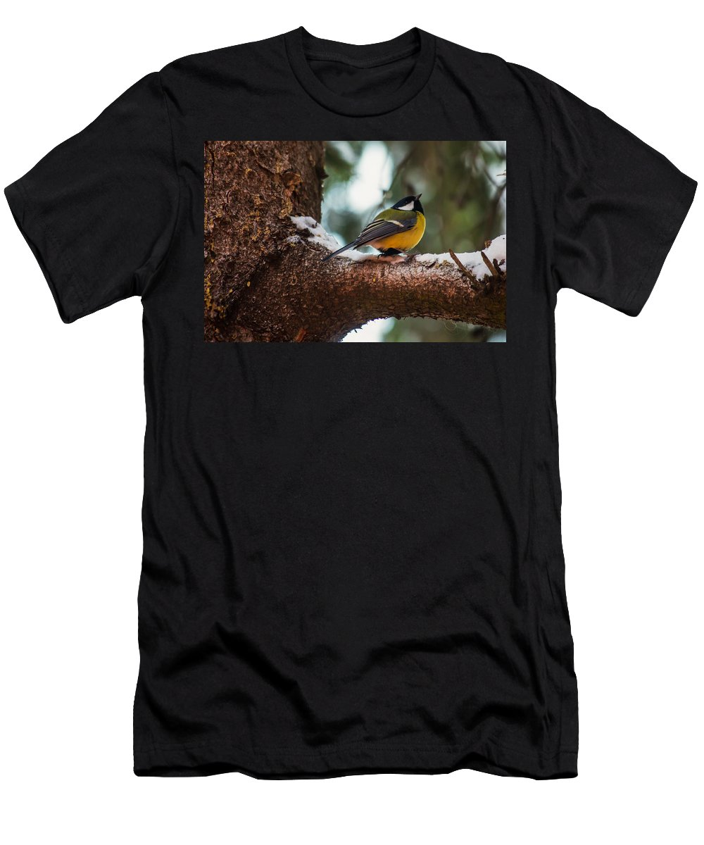 Great Tit Men's T-Shirt (Athletic Fit) featuring the photograph Male Great Tit by Eti Reid