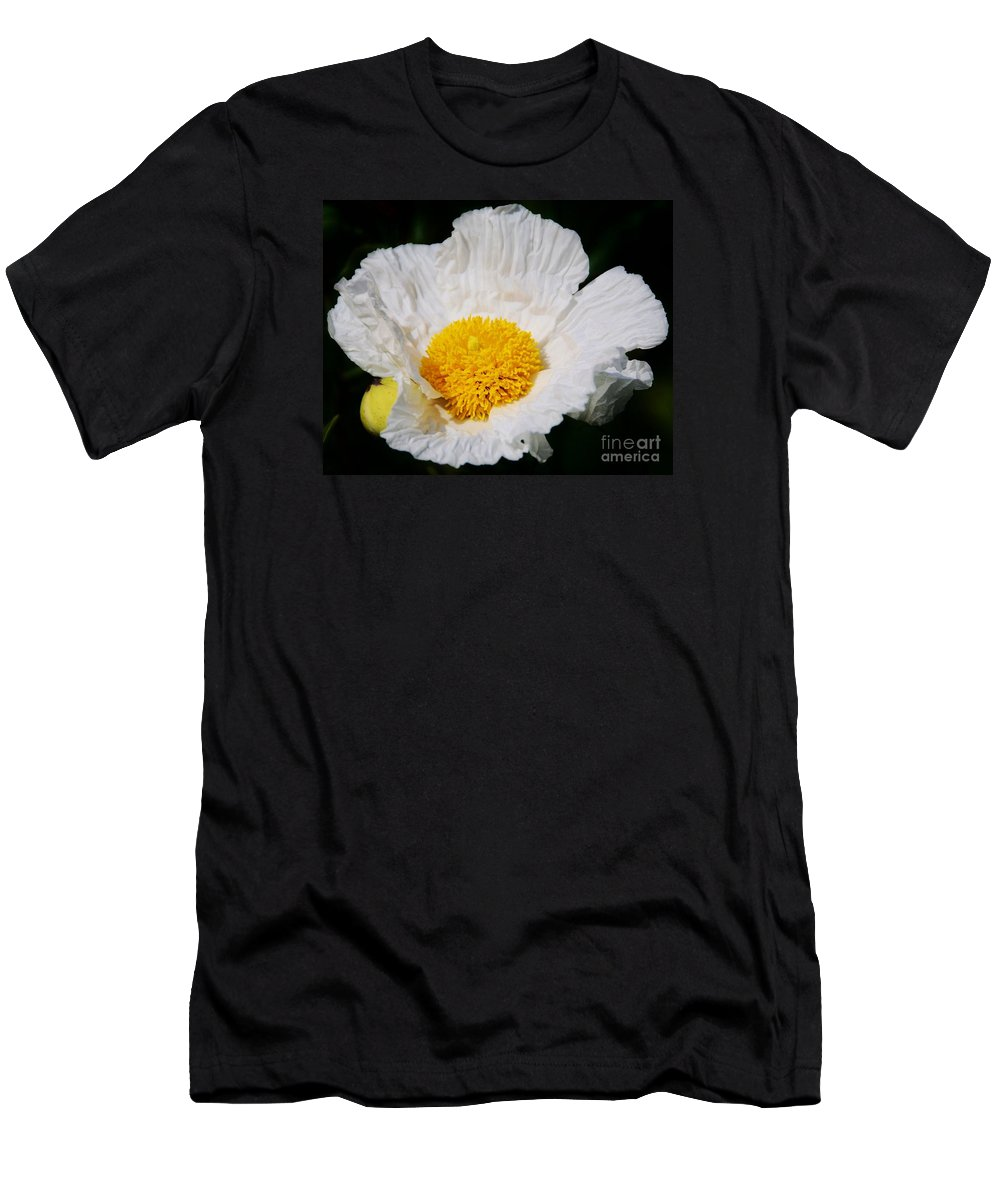 Matilija Poppy Photography Floral Photography Nature Photography Killruddery House Photography Ireland Flora Photography Canvas Print Greeting Card Metal Frame Men's T-Shirt (Athletic Fit) featuring the photograph Matilijia Poppy 2 by Marcus Dagan