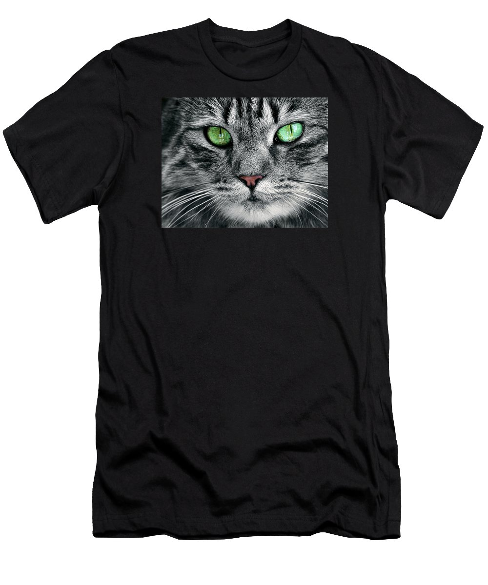 Cat Men's T-Shirt (Athletic Fit) featuring the photograph Mesmerizing by Marcia Colelli