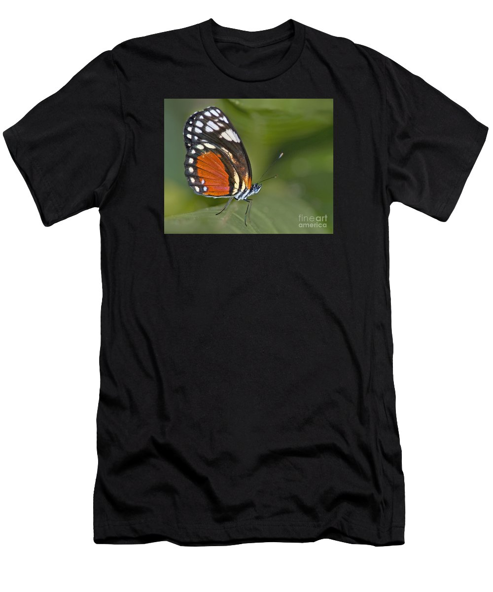 Festblues Men's T-Shirt (Athletic Fit) featuring the photograph Micro Wings... by Nina Stavlund