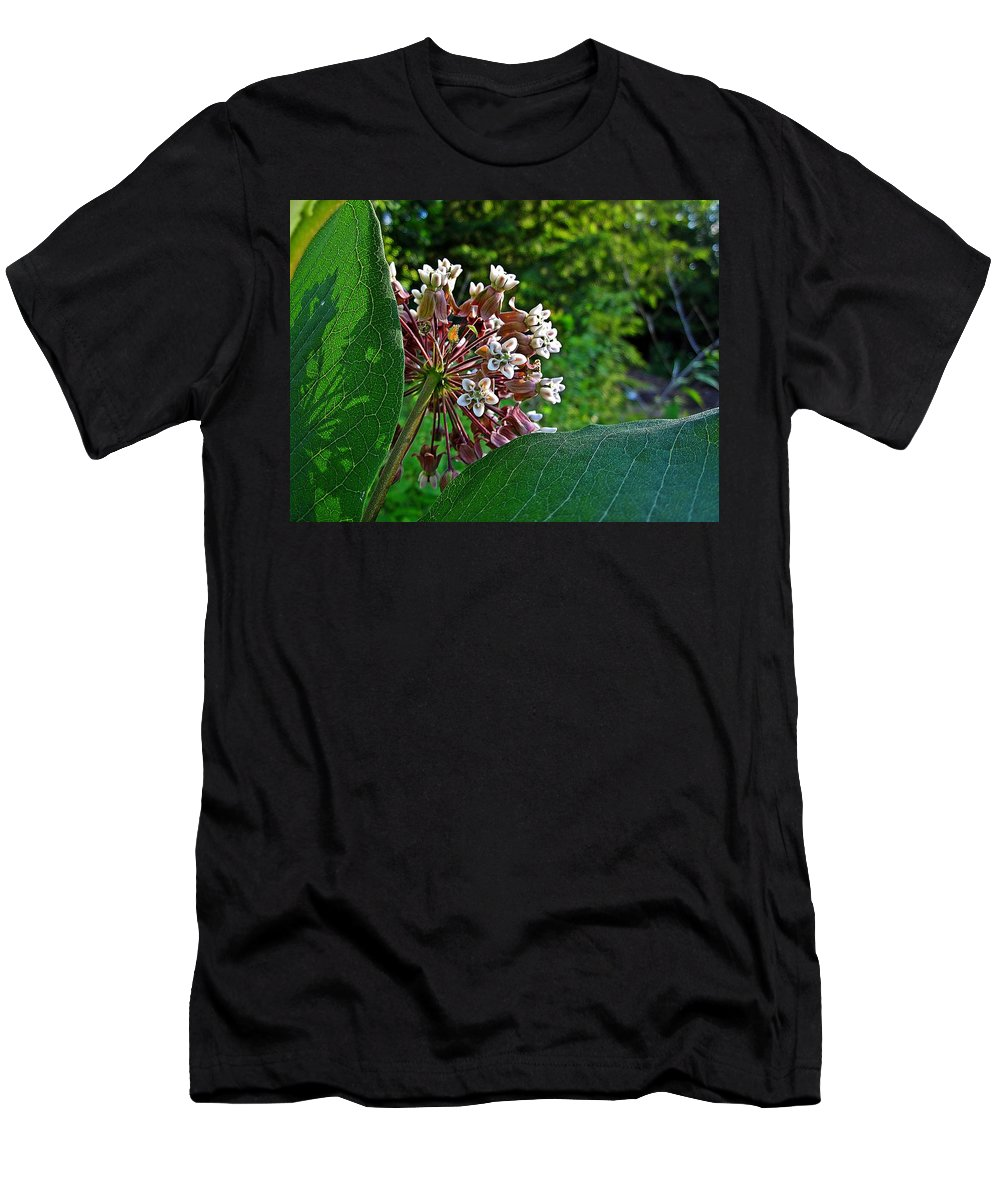 Milkweed Men's T-Shirt (Athletic Fit) featuring the photograph Milkweed Flowers And Leaves by MTBobbins Photography