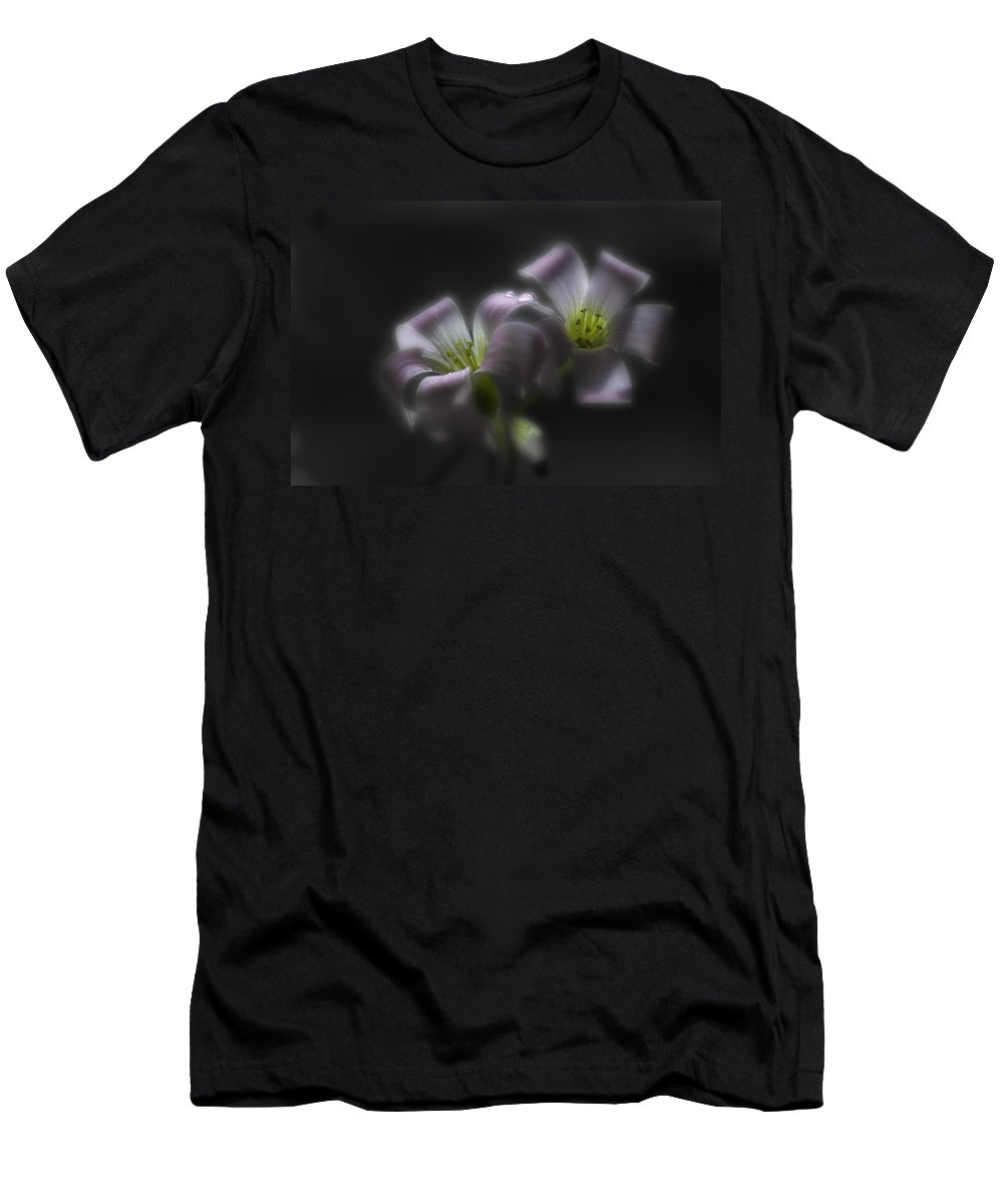 Shamrock Men's T-Shirt (Athletic Fit) featuring the photograph Misty Shamrock 2 by Susan Capuano
